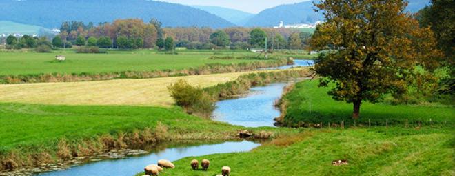 Region Franche Comté